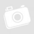 GV BX520D, D/N su mechaniniu filtru kamera, IP